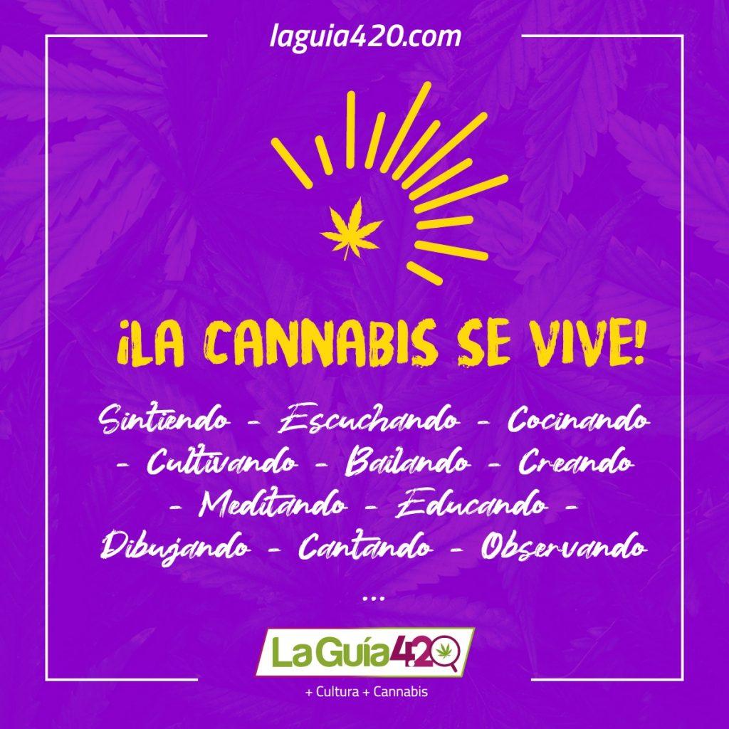 formas de vivir la cannabis